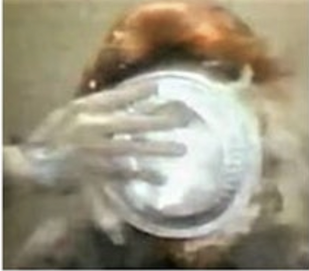 Anita Bryant with a pie in the face