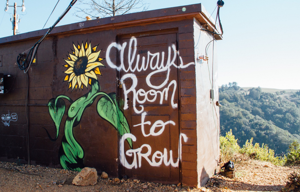 "building painted with text that says ""always room to grow"""